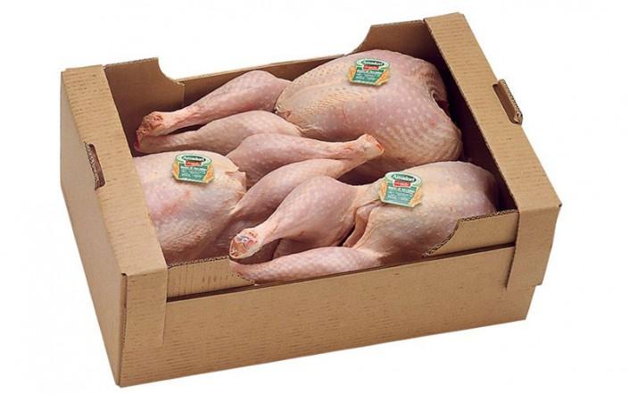 Whole Female Turkey 6-8-kg